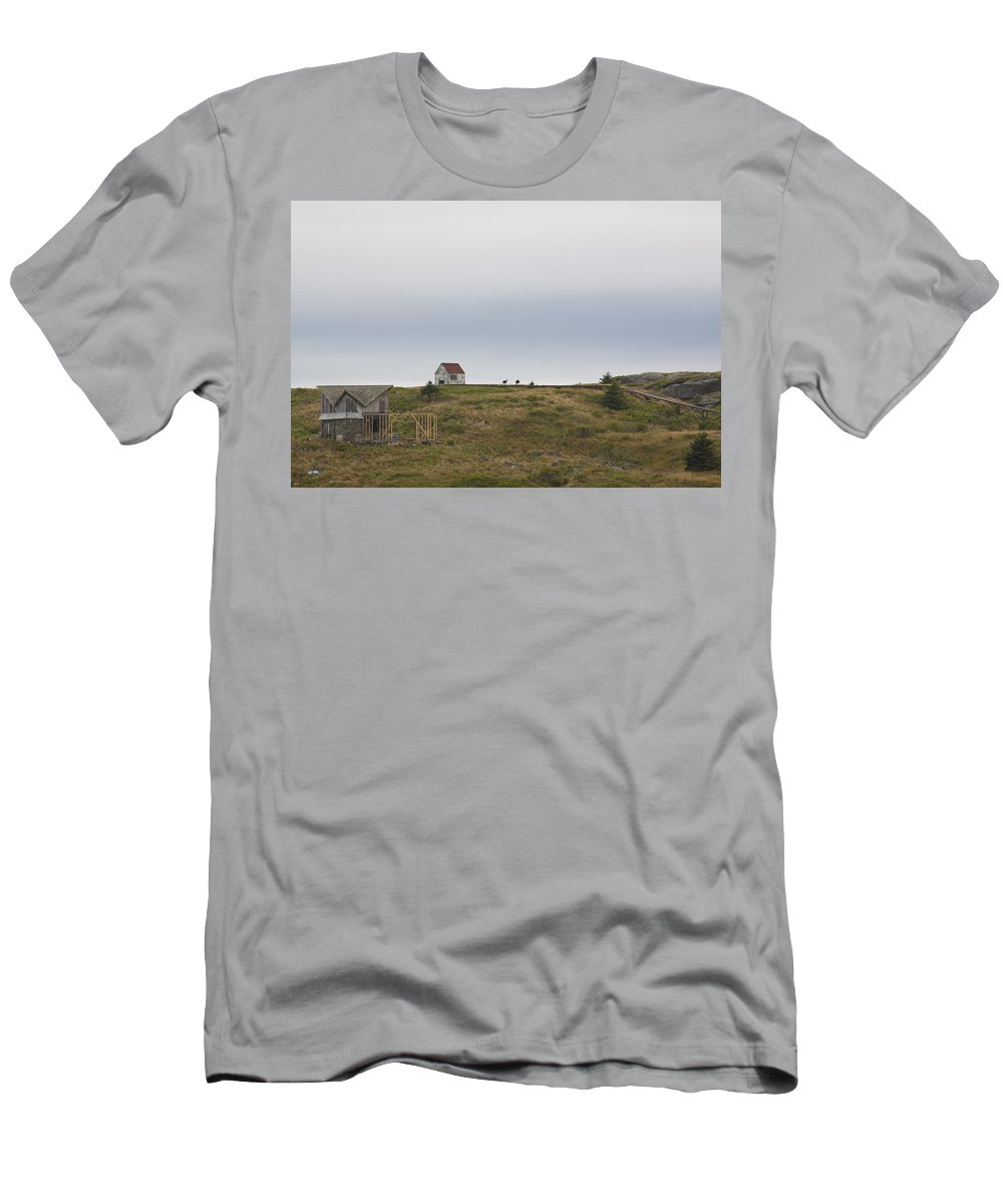 Goats Men's T-Shirt (Athletic Fit) featuring the photograph Manana Goats by Jean Macaluso