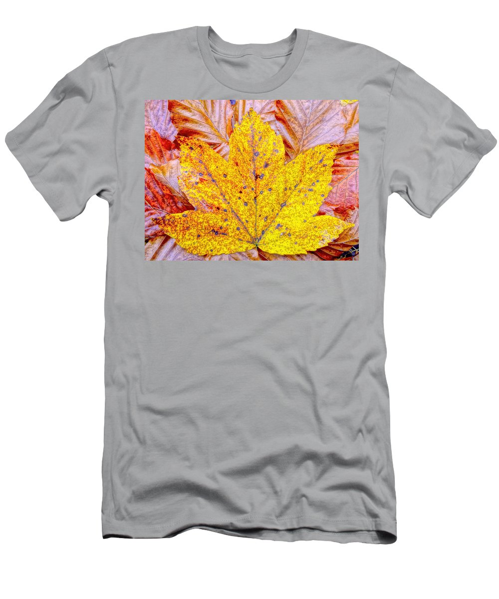 Maple Men's T-Shirt (Athletic Fit) featuring the photograph Maple Leaf In Fall by M Bleichner