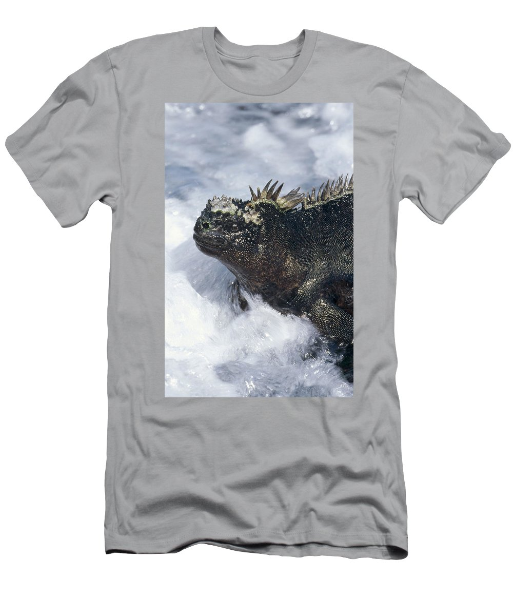 Feb0514 Men's T-Shirt (Athletic Fit) featuring the photograph Marine Iguana In Surf Galapagos Islands by Tui De Roy
