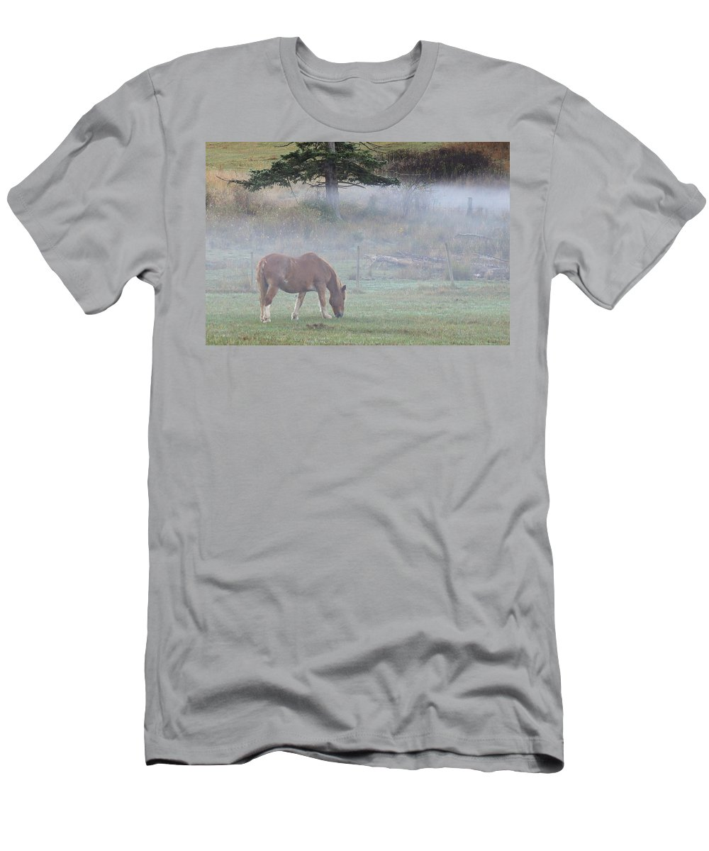 Horse Men's T-Shirt (Athletic Fit) featuring the photograph Misty Meadow by Randy Hall