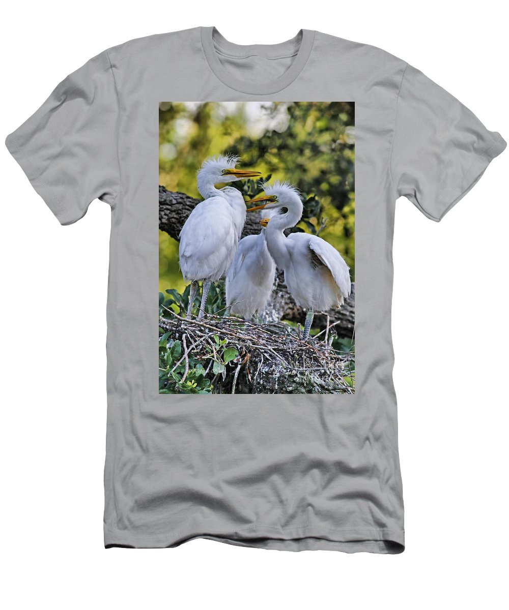 Egret Men's T-Shirt (Athletic Fit) featuring the photograph Mom Where Are You by Deborah Benoit