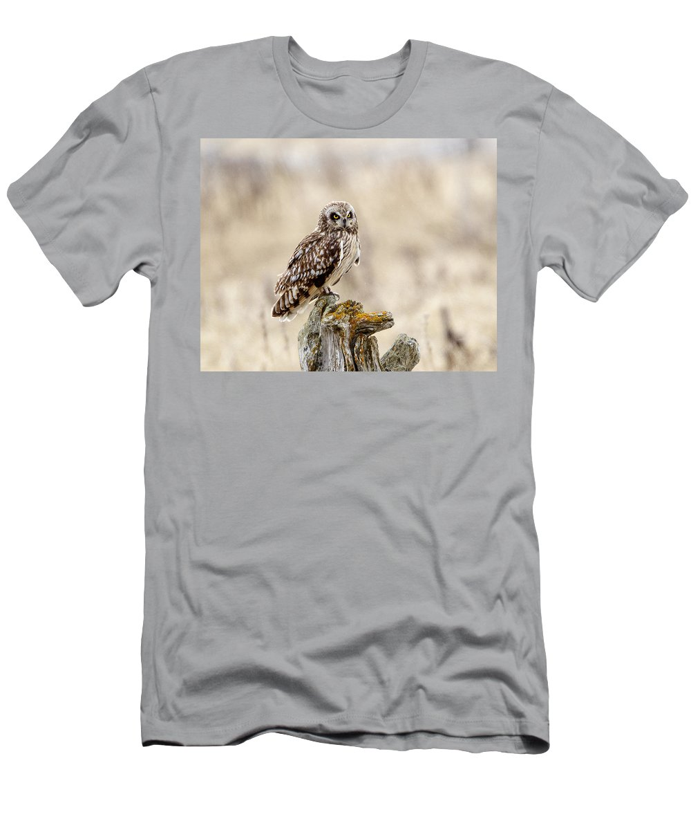 Doug Lloyd Men's T-Shirt (Athletic Fit) featuring the photograph Morning Hunter by Doug Lloyd