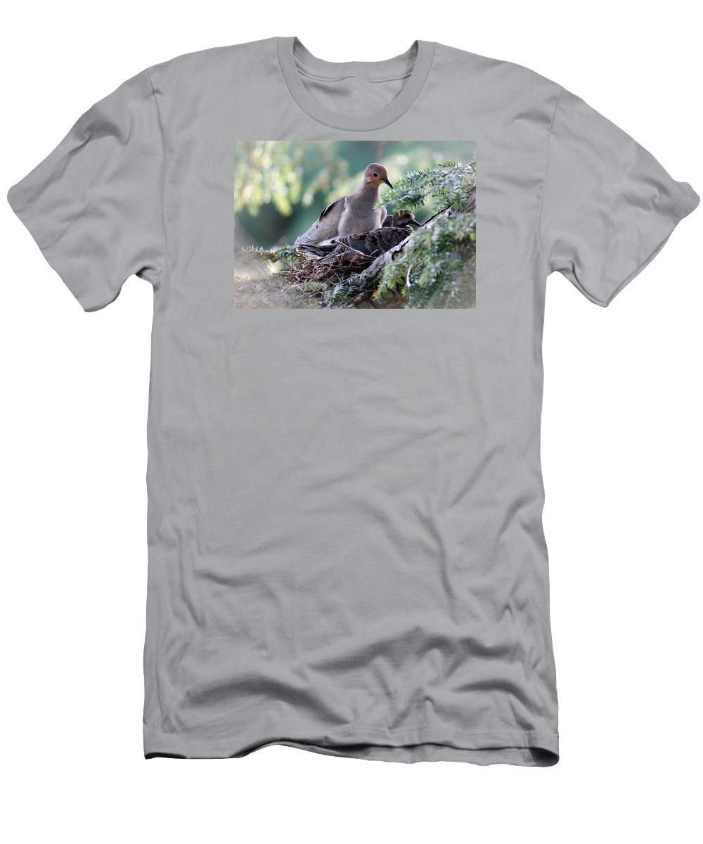 Dove Men's T-Shirt (Athletic Fit) featuring the photograph Mother's Love by Harold Hopkins