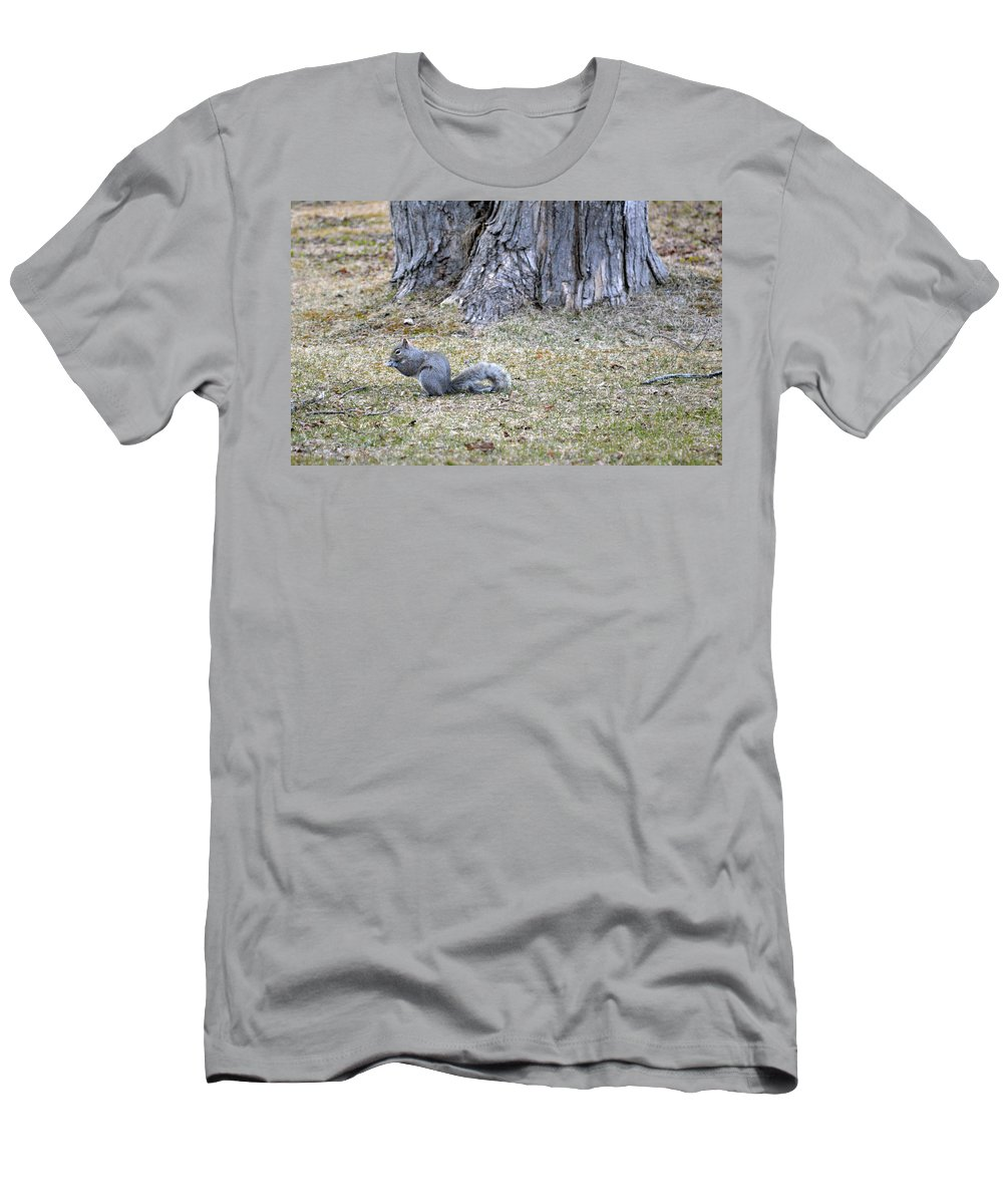 Squirrel Men's T-Shirt (Athletic Fit) featuring the photograph Nutty by Linda Kerkau