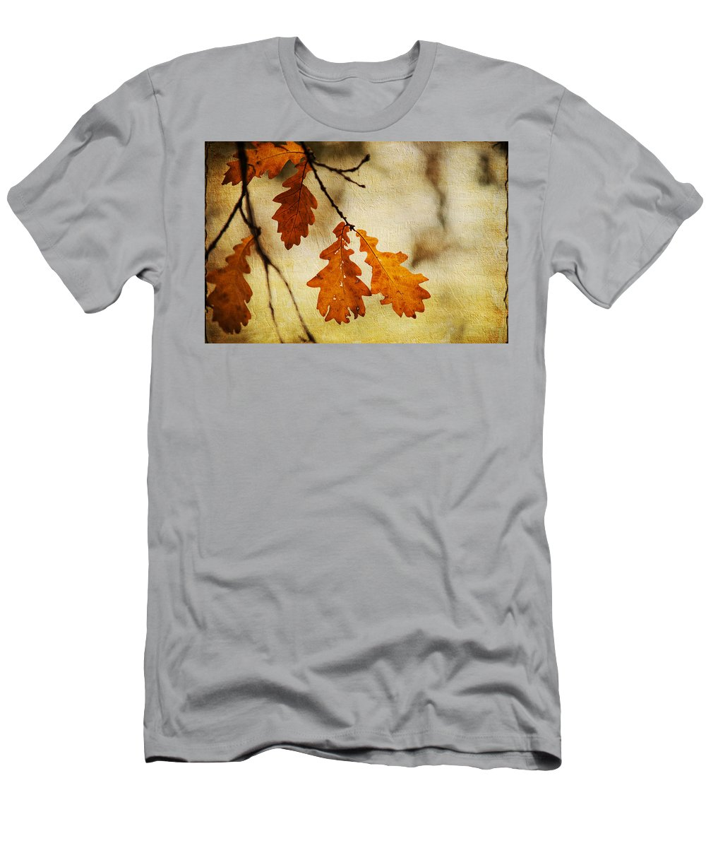 Autumn Men's T-Shirt (Athletic Fit) featuring the photograph Oak Leaves At Autumn by Jenny Rainbow
