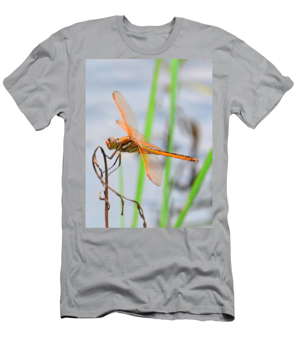 Orange Dragonfly On The Water's Edge Men's T-Shirt (Athletic Fit) featuring the photograph Orange Dragonfly On The Water's Edge by Maria Urso