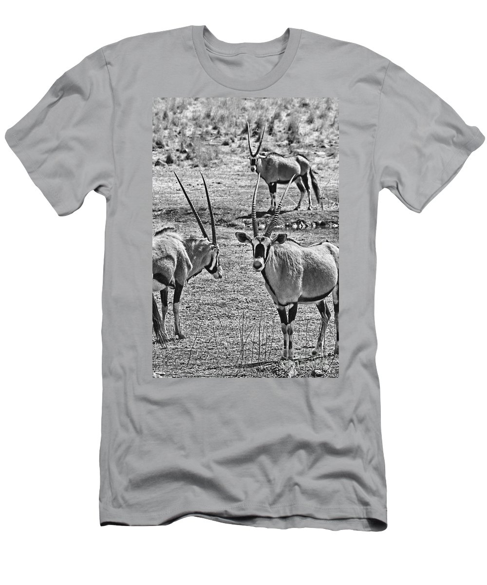Oryx Men's T-Shirt (Athletic Fit) featuring the photograph Oryx Black And White by Douglas Barnard
