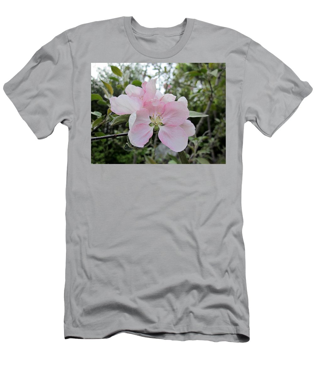 Firecracker Edible Crabapple Men's T-Shirt (Athletic Fit) featuring the photograph Pale Pink Crabapple Blossom by MTBobbins Photography