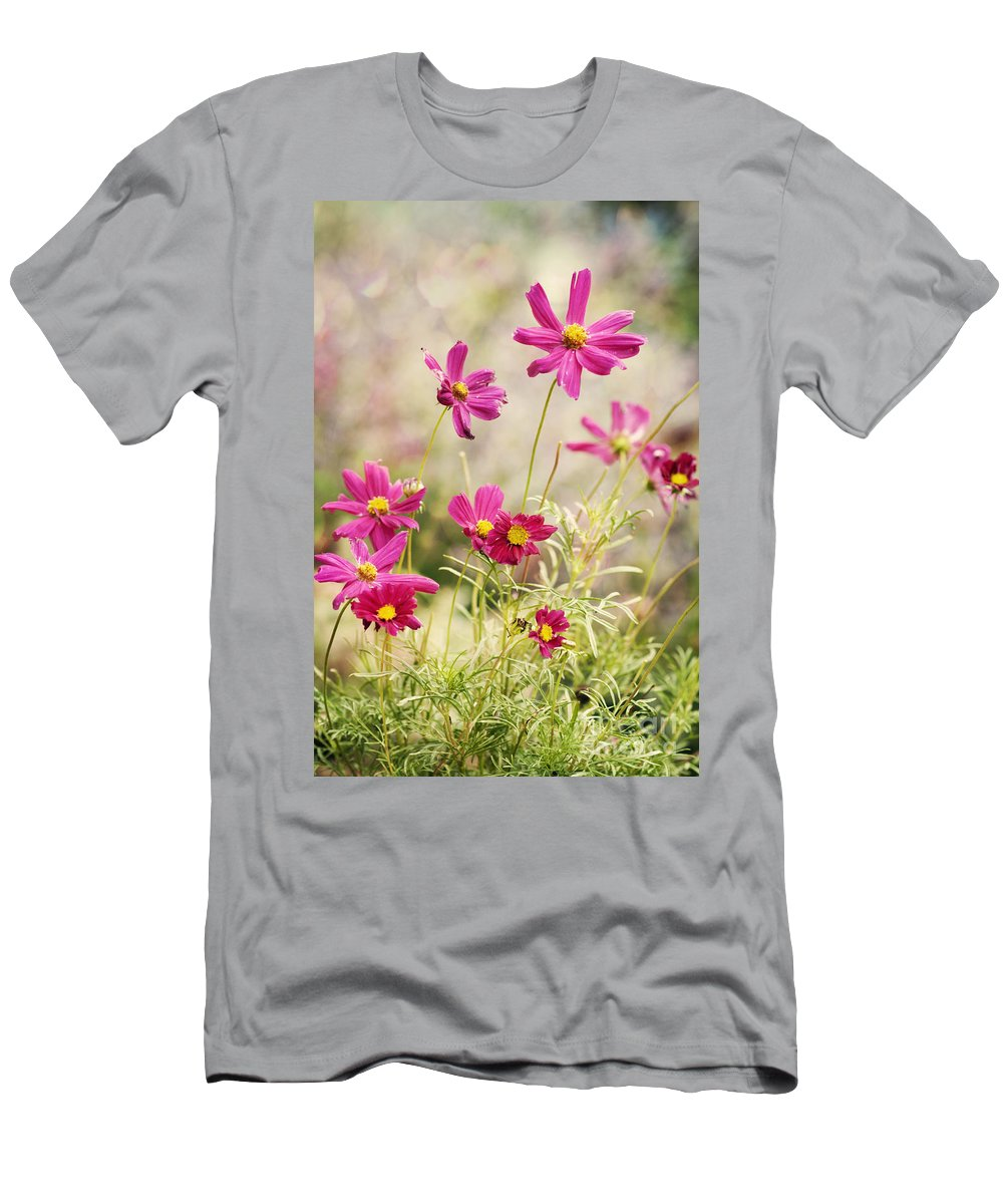 Asteraceae Men's T-Shirt (Athletic Fit) featuring the photograph Pink Cosmos by Juli Scalzi