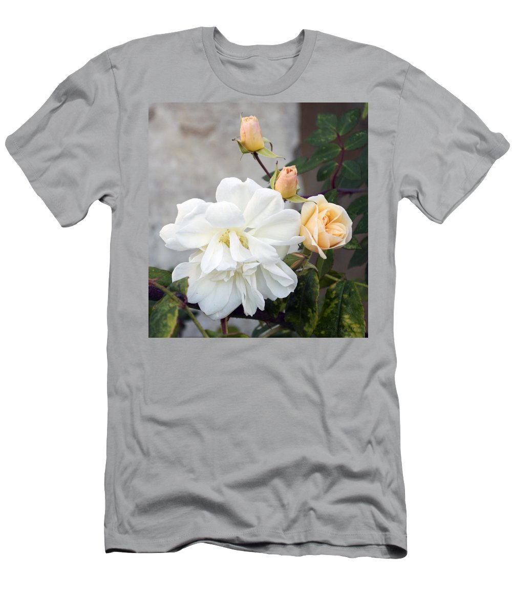 Pink Rose Buds At Carmel By The Sea Mission Men's T-Shirt (Athletic Fit) featuring the digital art Pink Rose Buds At Carmel By The Sea Mission by Barbara Snyder
