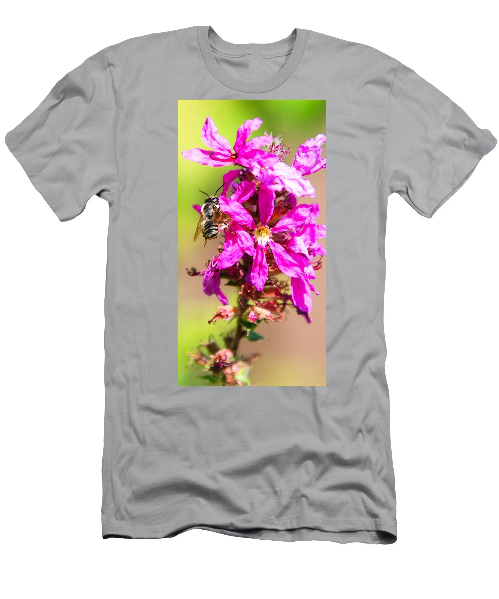 Purple Wild Flower Men's T-Shirt (Athletic Fit) featuring the photograph Purple Wild Flower by Optical Playground By MP Ray