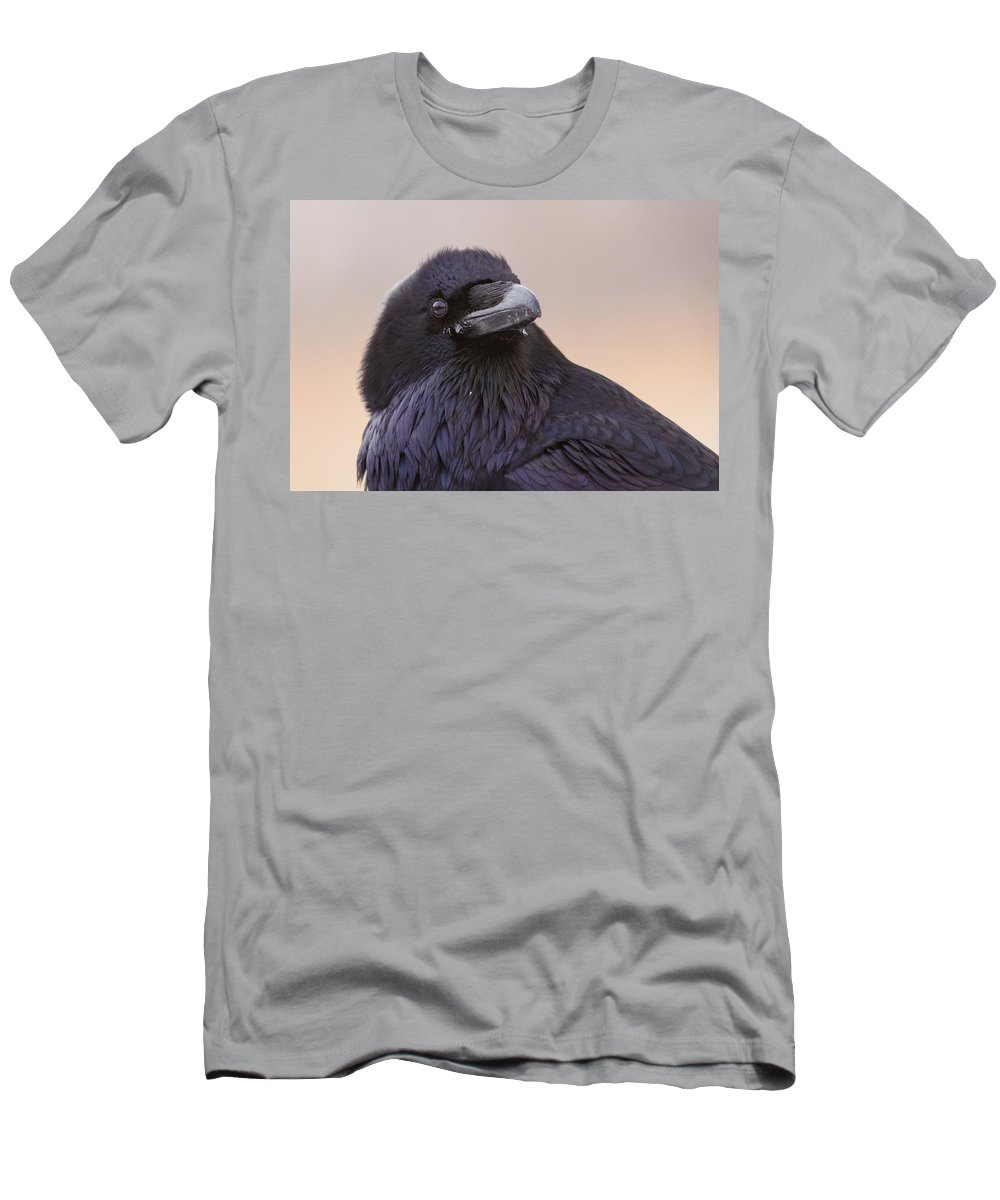 Common Men's T-Shirt (Athletic Fit) featuring the photograph Raven Portrait by Mircea Costina Photography