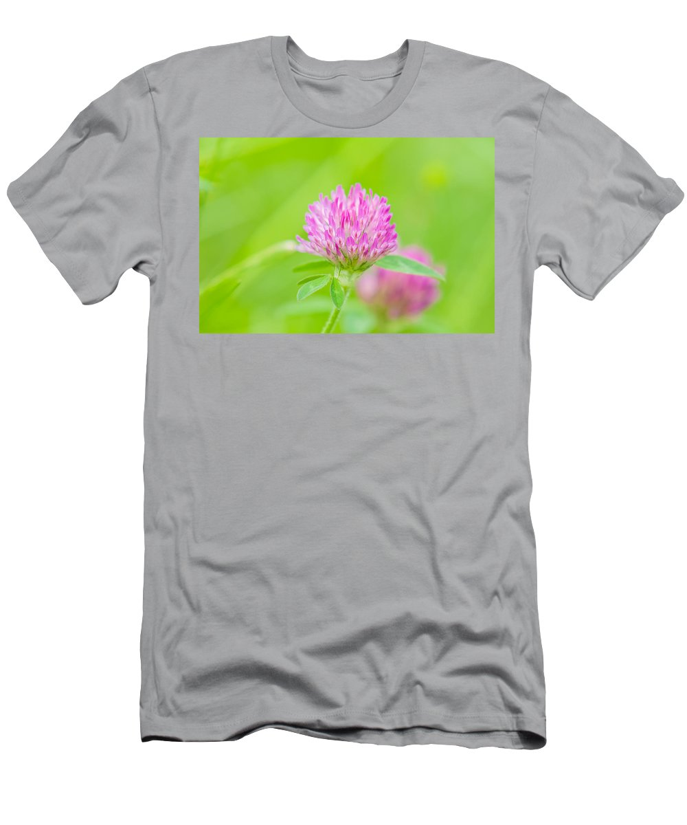 Angiosperms Men's T-Shirt (Athletic Fit) featuring the photograph Red Clover by Rich Leighton