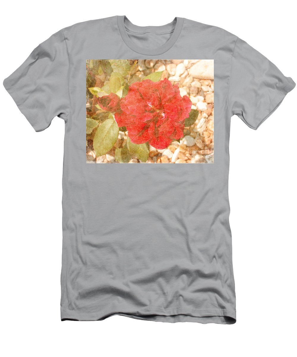 Roses Prints Men's T-Shirt (Athletic Fit) featuring the photograph Red Rose At Noon by Alys Caviness-Gober