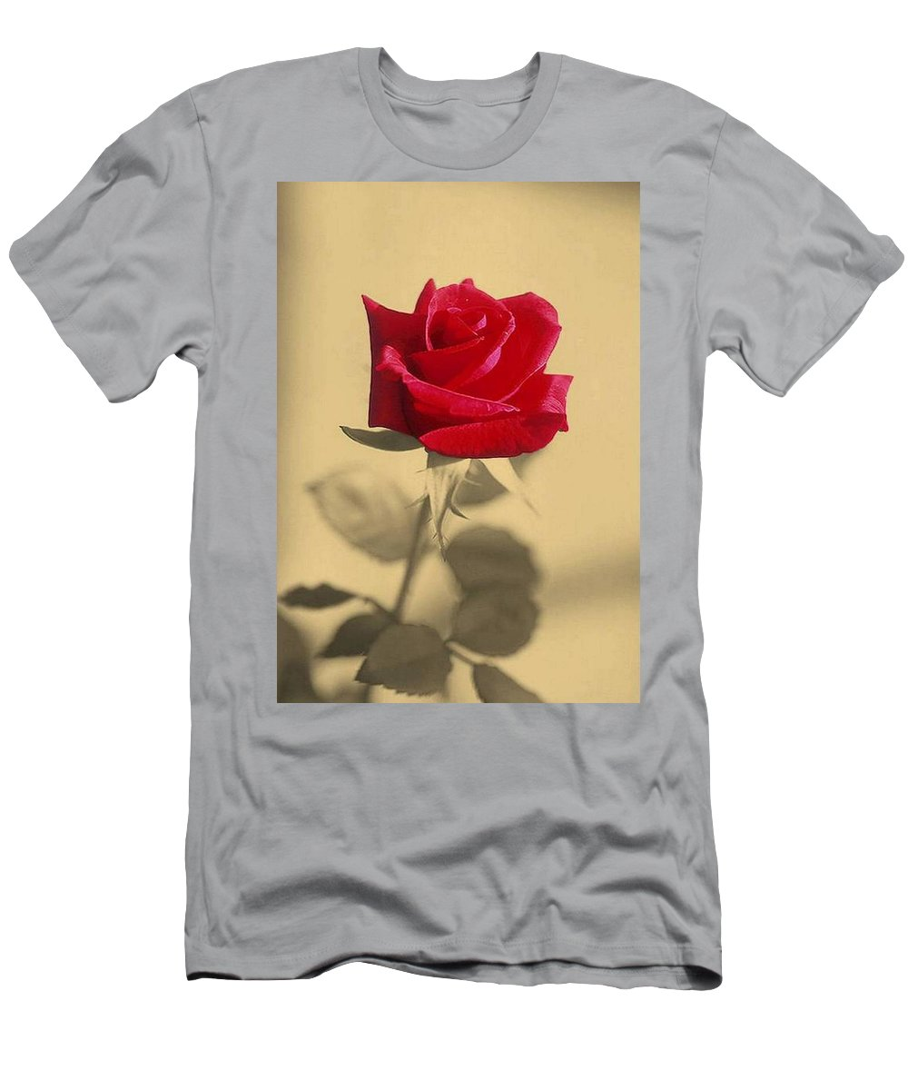 Rose Men's T-Shirt (Athletic Fit) featuring the photograph Red Rose Flower Isolated On Sepia Background by Taiche Acrylic Art