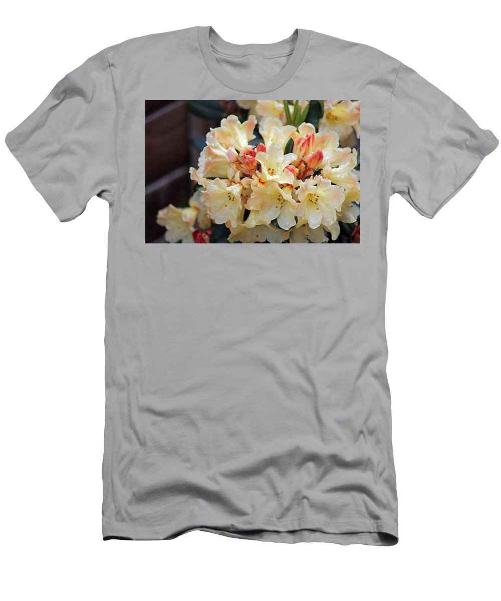 Rhododendron Nancy Evans Men's T-Shirt (Athletic Fit) featuring the photograph Rhododendron Nancy Evans by Tony Murtagh