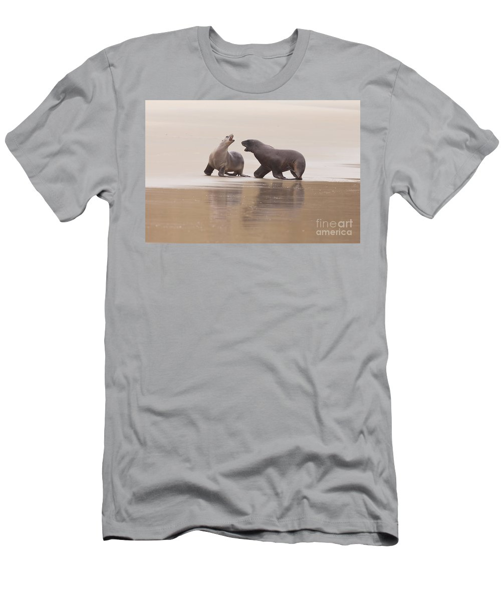 South Island Men's T-Shirt (Athletic Fit) featuring the photograph Rough Courtship Of Male And Female Hookers Sealions by Stephan Pietzko