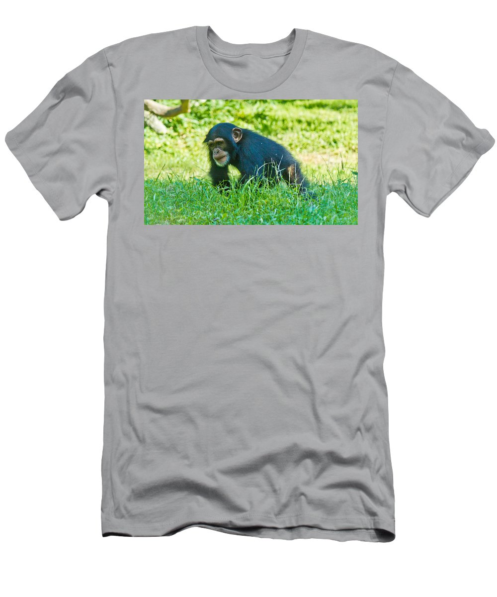 Animals Andearth Men's T-Shirt (Athletic Fit) featuring the photograph Running Chimp by Jonny D