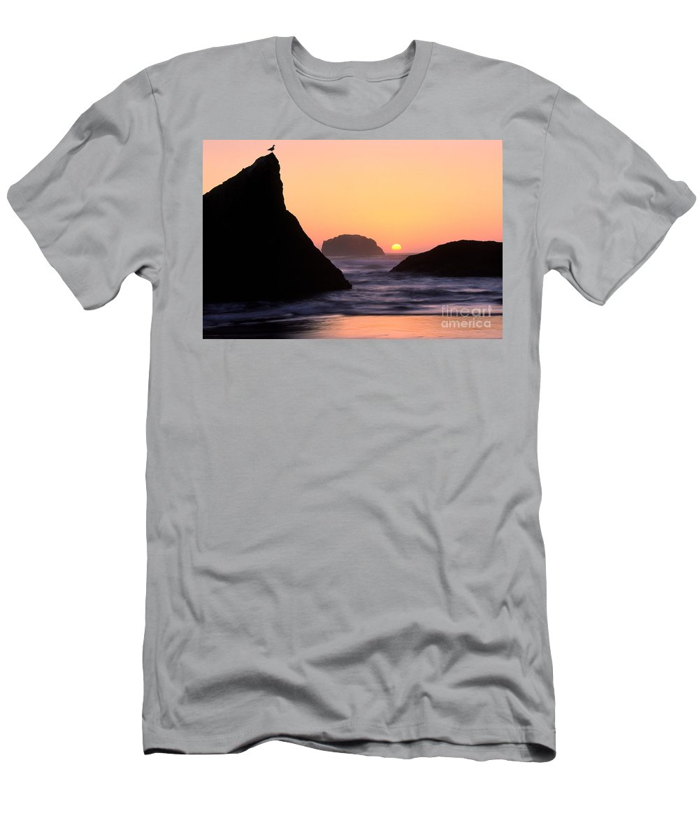 America Men's T-Shirt (Athletic Fit) featuring the photograph Seagull And Sunset by Inge Johnsson
