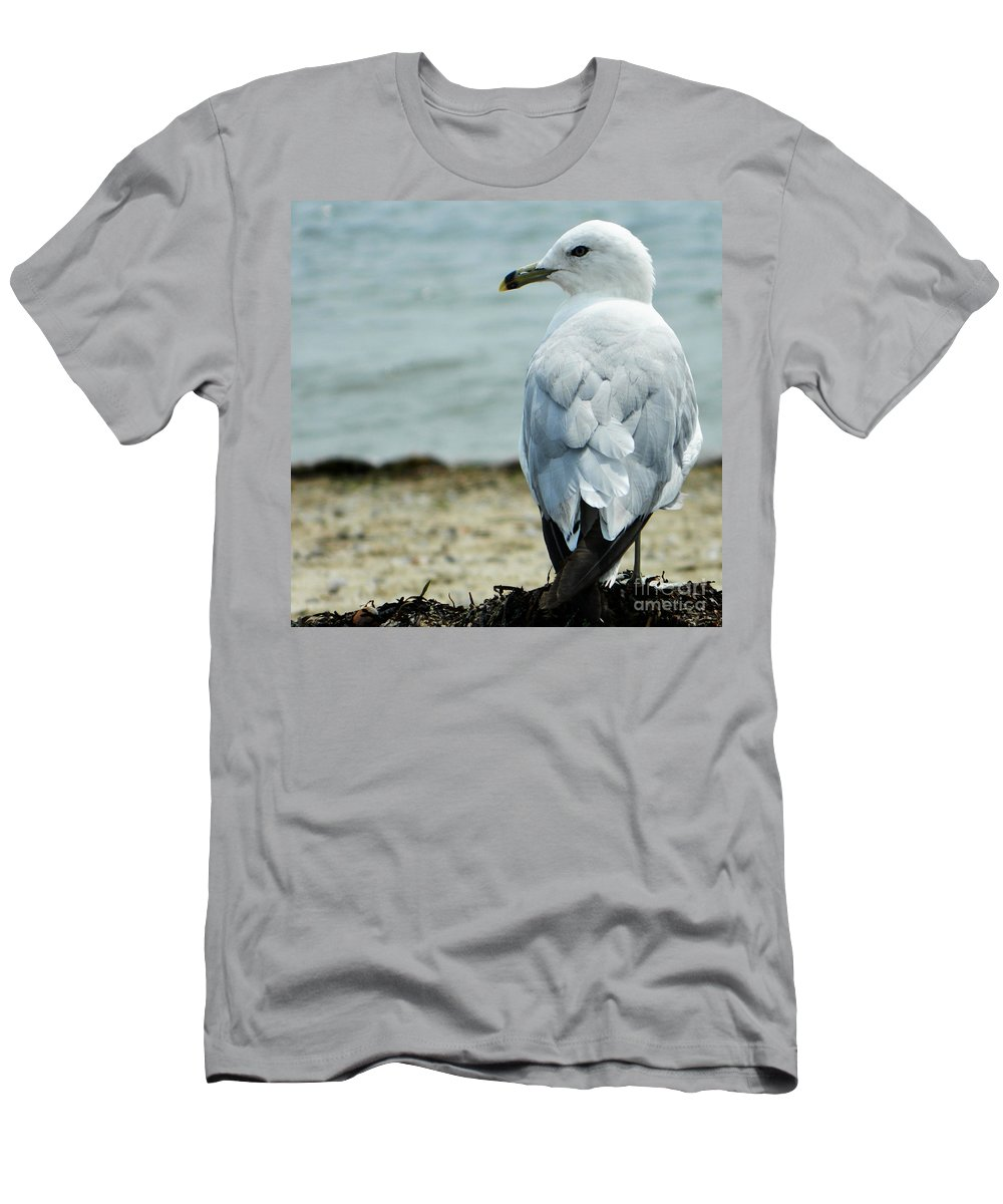Seagull Men's T-Shirt (Athletic Fit) featuring the photograph Seagull by Andrea Anderegg