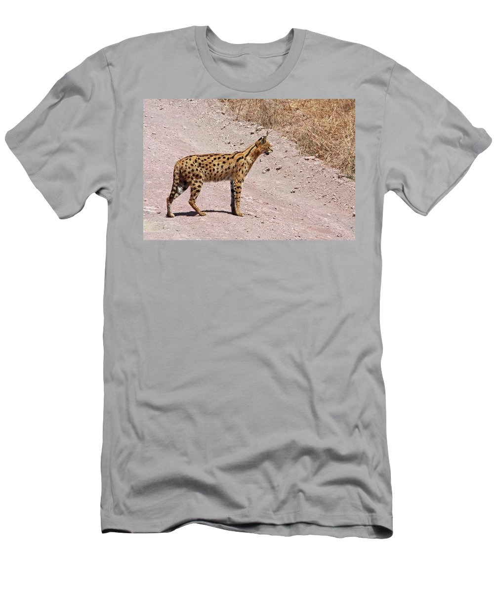 Serval Cat Men's T-Shirt (Athletic Fit) featuring the photograph Serval Cat by Aidan Moran