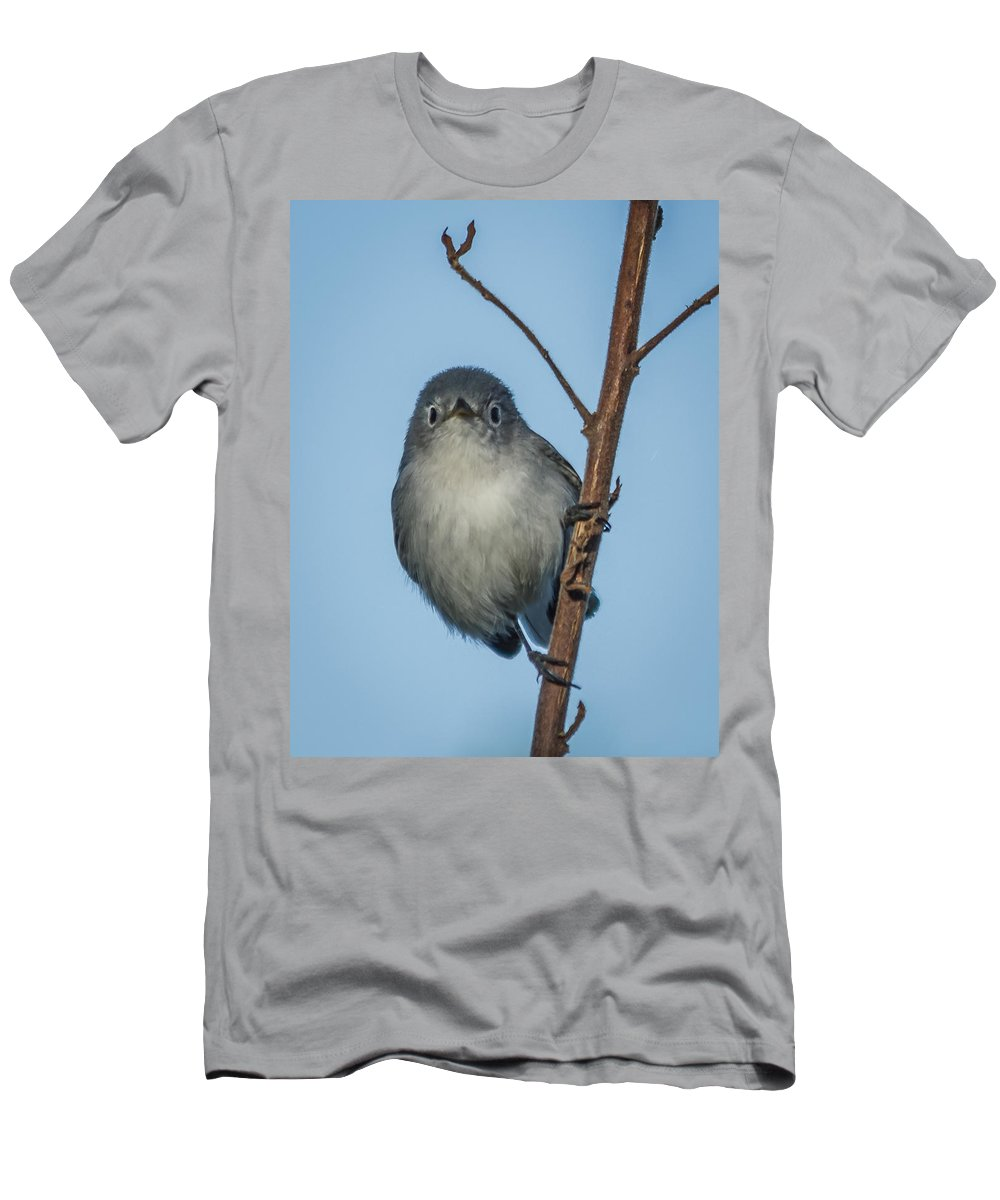 Bird Men's T-Shirt (Athletic Fit) featuring the photograph She Sees Me by Jane Luxton