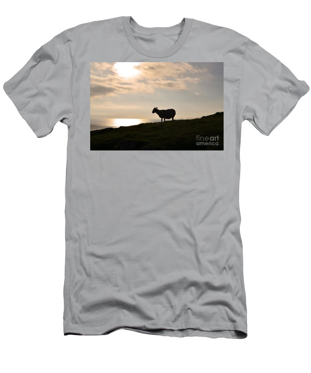 Sheep Men's T-Shirt (Athletic Fit) featuring the photograph Sheep Silhouetted By Neist Point On Skye by DejaVu Designs
