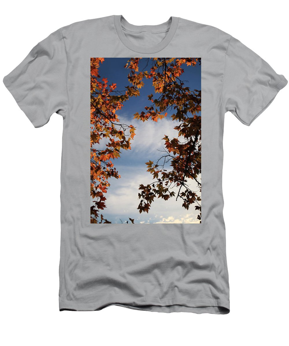 Calistoga Men's T-Shirt (Athletic Fit) featuring the photograph Skyward by Laurie Search