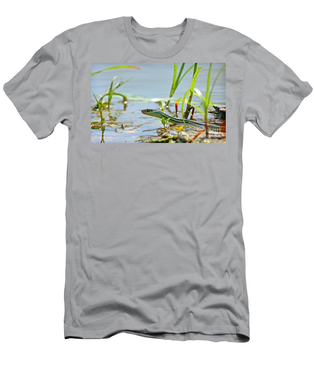 Ribbon Snake Men's T-Shirt (Athletic Fit) featuring the pyrography Slither by David Cutts