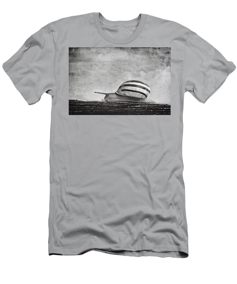 Snail Men's T-Shirt (Athletic Fit) featuring the photograph Slow Walk by Alfio Finocchiaro