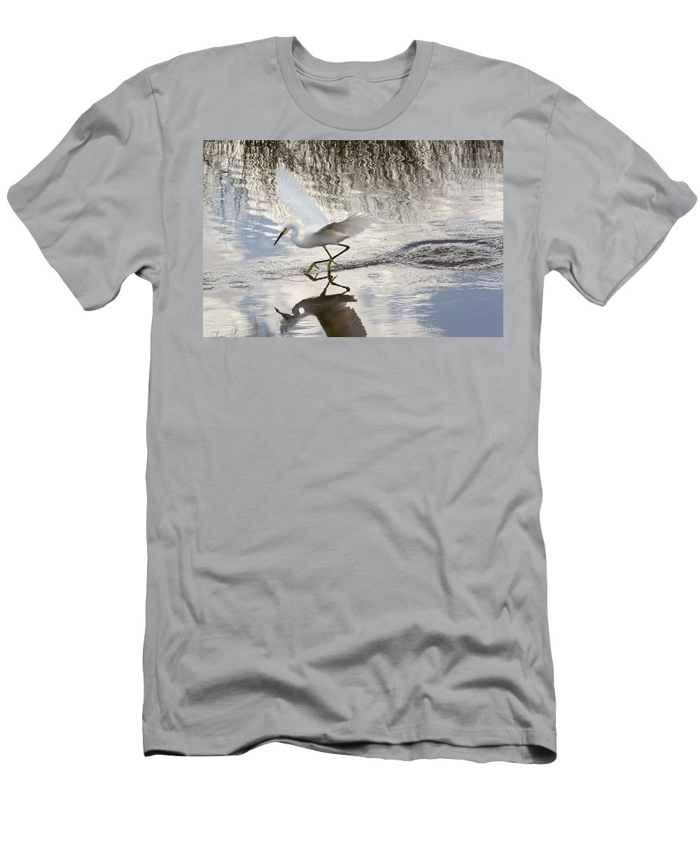Nature Men's T-Shirt (Athletic Fit) featuring the photograph Snowy Egret Gliding Across The Water by John M Bailey