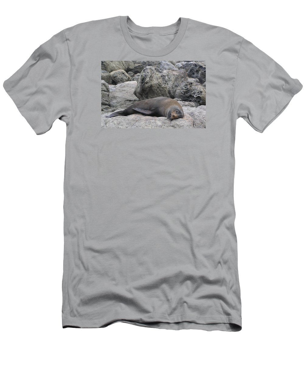 Soft Life Seal Men's T-Shirt (Athletic Fit) featuring the photograph Soft Life Seal by Dreamland Media