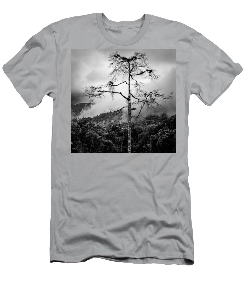 Cameron Highlands Men's T-Shirt (Athletic Fit) featuring the photograph Solitary Tree by Dave Bowman