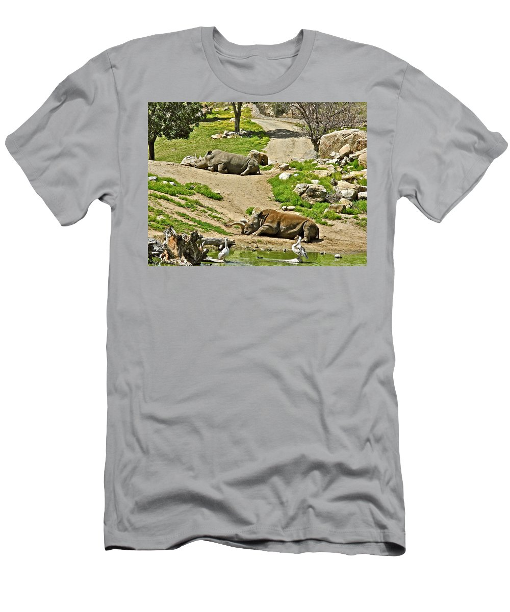 Southern White Rhinoceros In San Diego Zoo Safari Park In Escondido Men's T-Shirt (Athletic Fit) featuring the photograph Southern White Rhinoceros In San Diego Zoo Safari Park In Escondido-california by Ruth Hager