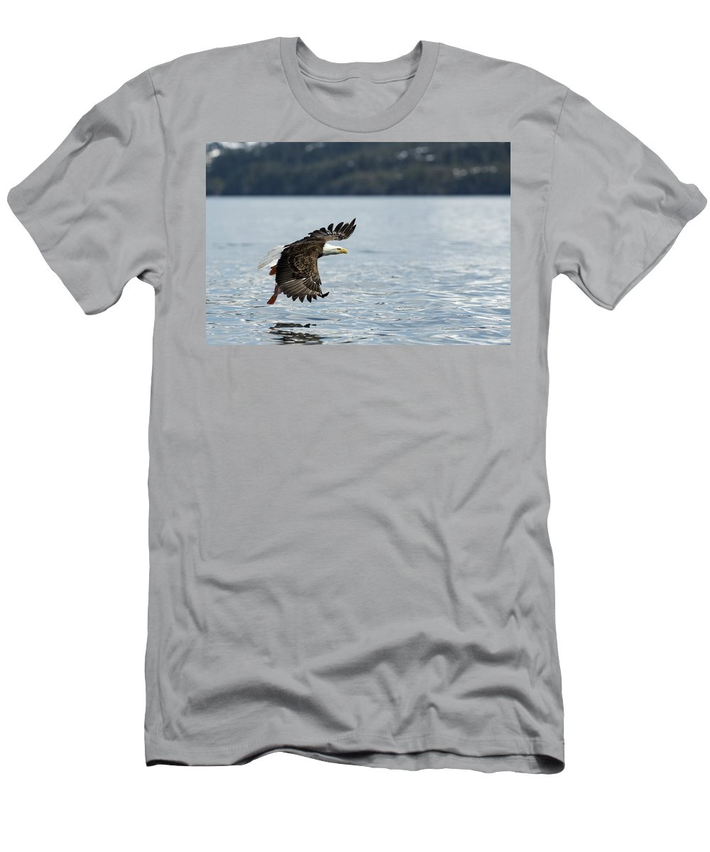 Eagle Men's T-Shirt (Athletic Fit) featuring the photograph Spread Your Wings by Ted Raynor