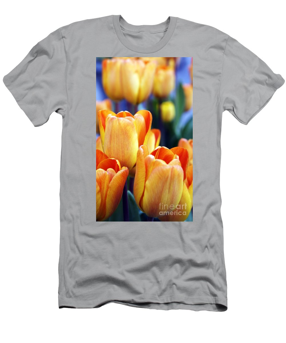 Orange Men's T-Shirt (Athletic Fit) featuring the photograph Standing Tall Tulips by Lilliana Mendez