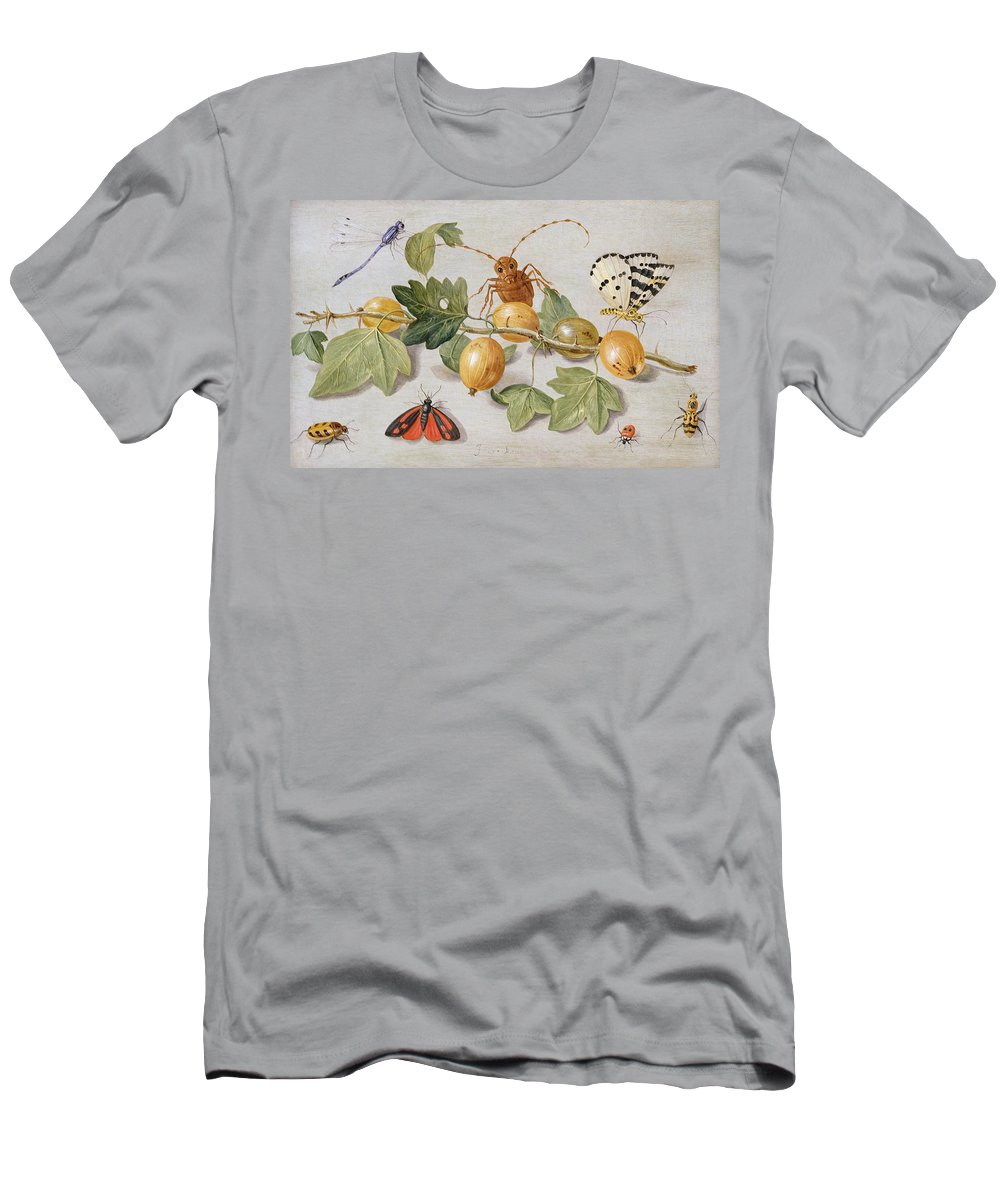 Gooseberry Men's T-Shirt (Athletic Fit) featuring the painting Still Life Of Branch Of Gooseberries by Jan Van Kessel