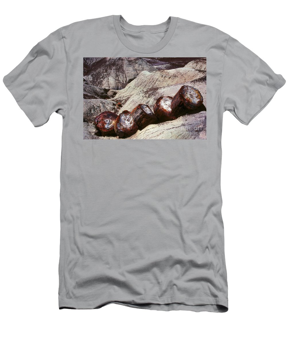 Petrified Forest Men's T-Shirt (Athletic Fit) featuring the photograph Stone Trees - 360 by Paul W Faust - Impressions of Light