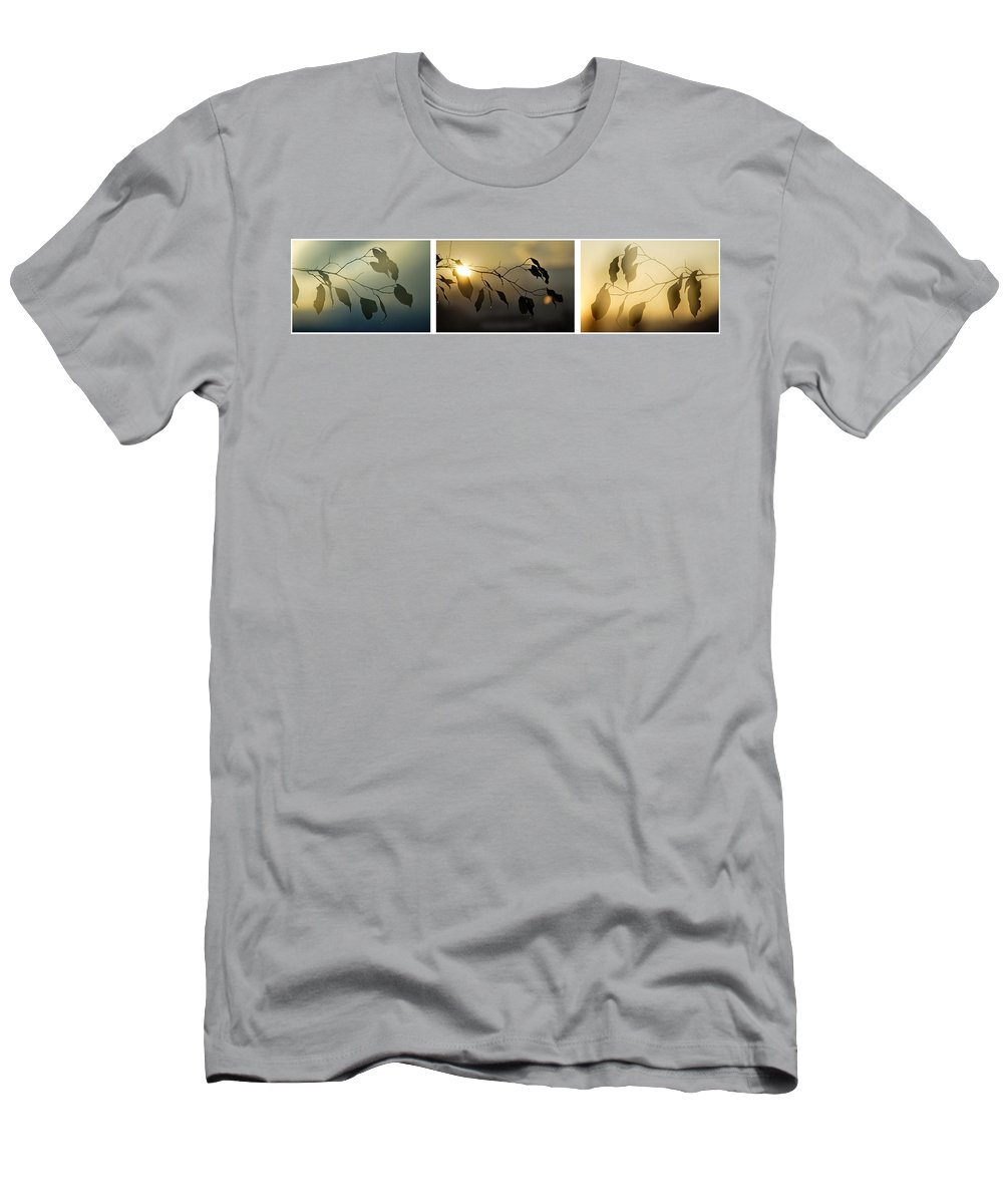 Triptic Men's T-Shirt (Athletic Fit) featuring the photograph Sun Leaves by Guido Montanes Castillo