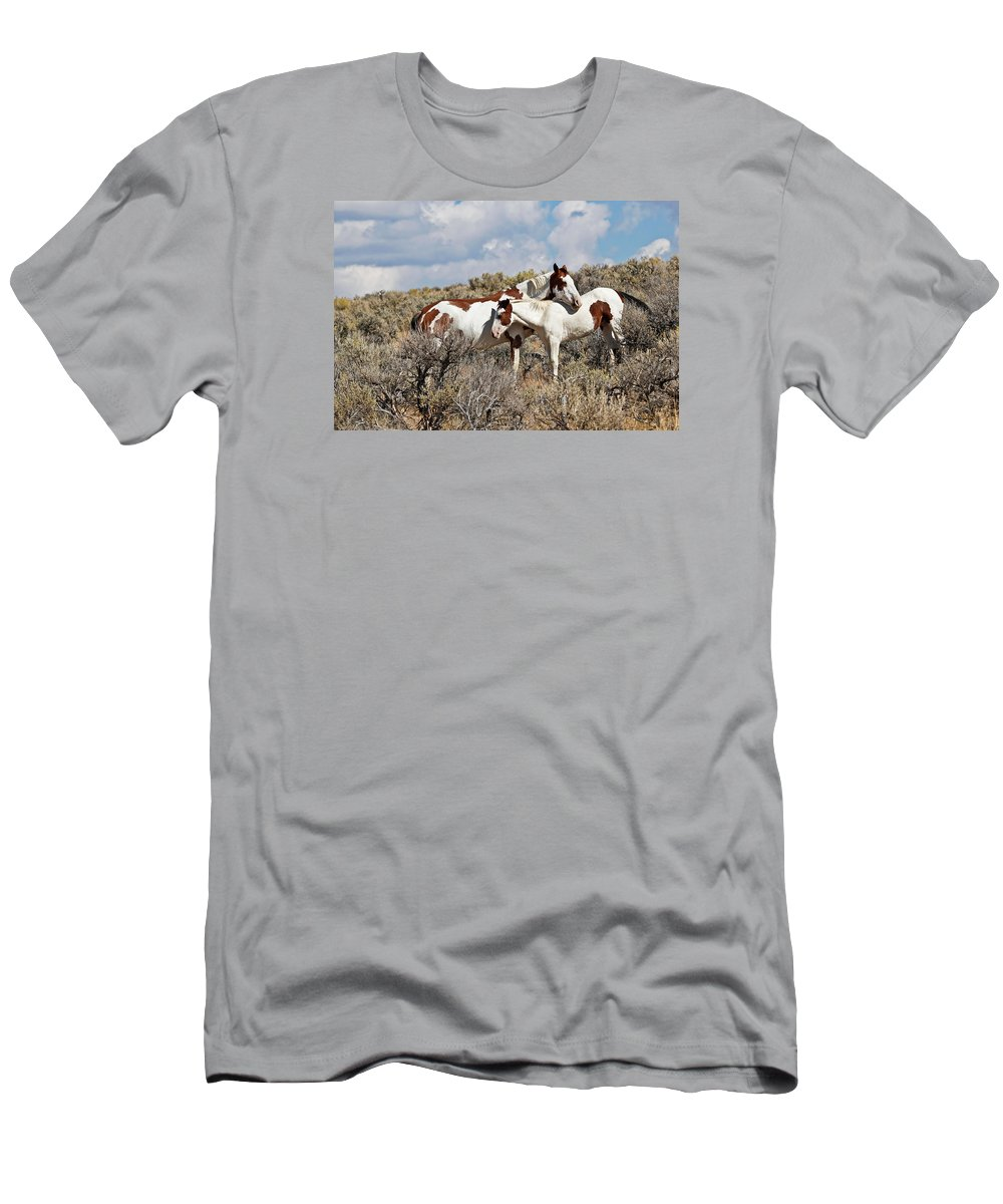 Horses Men's T-Shirt (Athletic Fit) featuring the photograph Take Me As I Am by Athena Mckinzie