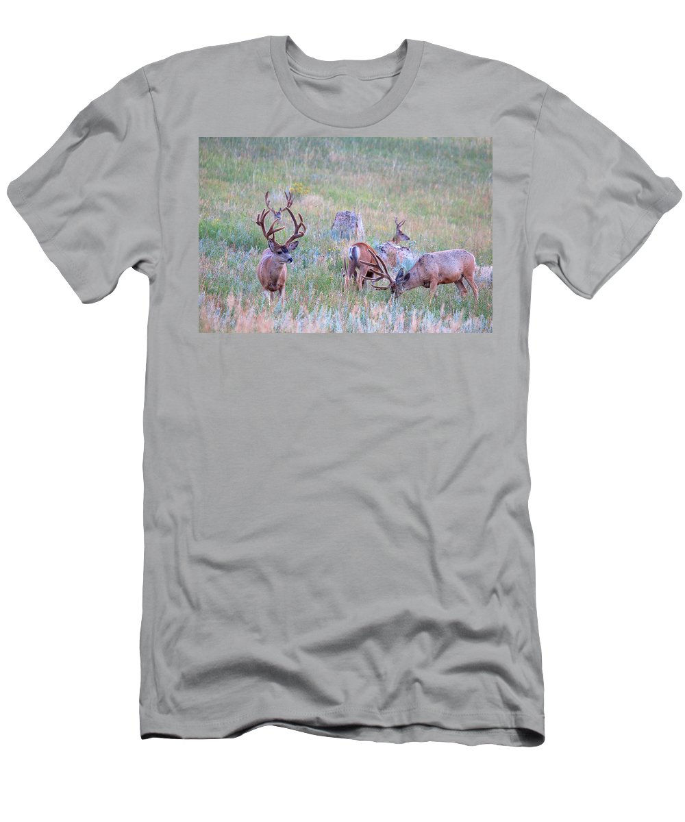 Mule Deer Herd Photograph Men's T-Shirt (Athletic Fit) featuring the photograph The Boys In The Band by Jim Garrison