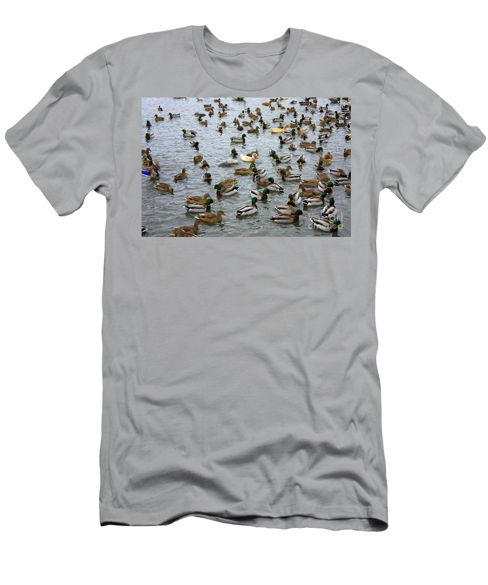 Duck Men's T-Shirt (Athletic Fit) featuring the photograph The Duck Pond by Carol Groenen