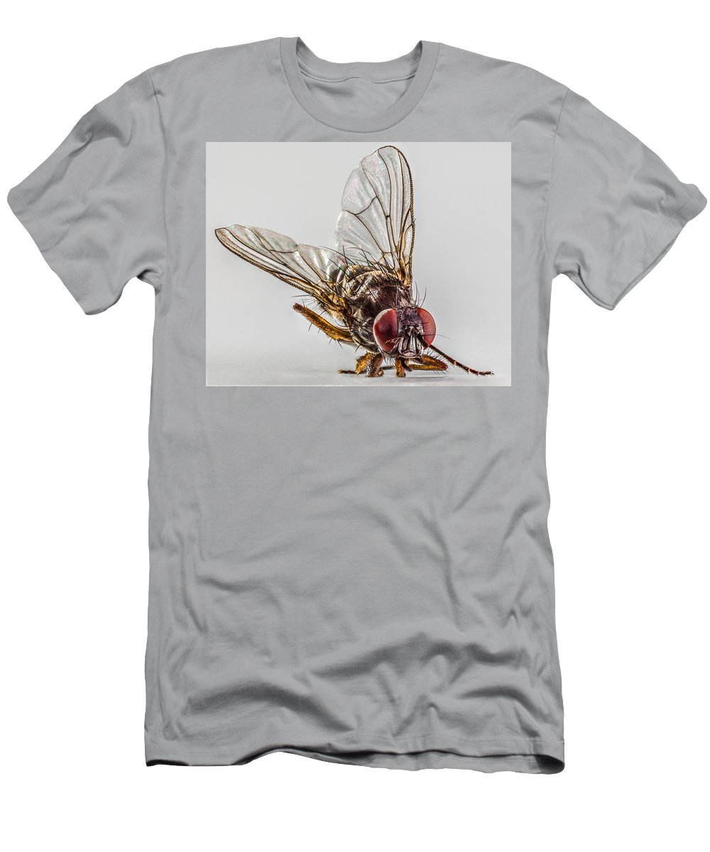 Fly Men's T-Shirt (Athletic Fit) featuring the photograph The Fly by Ernesto Santos