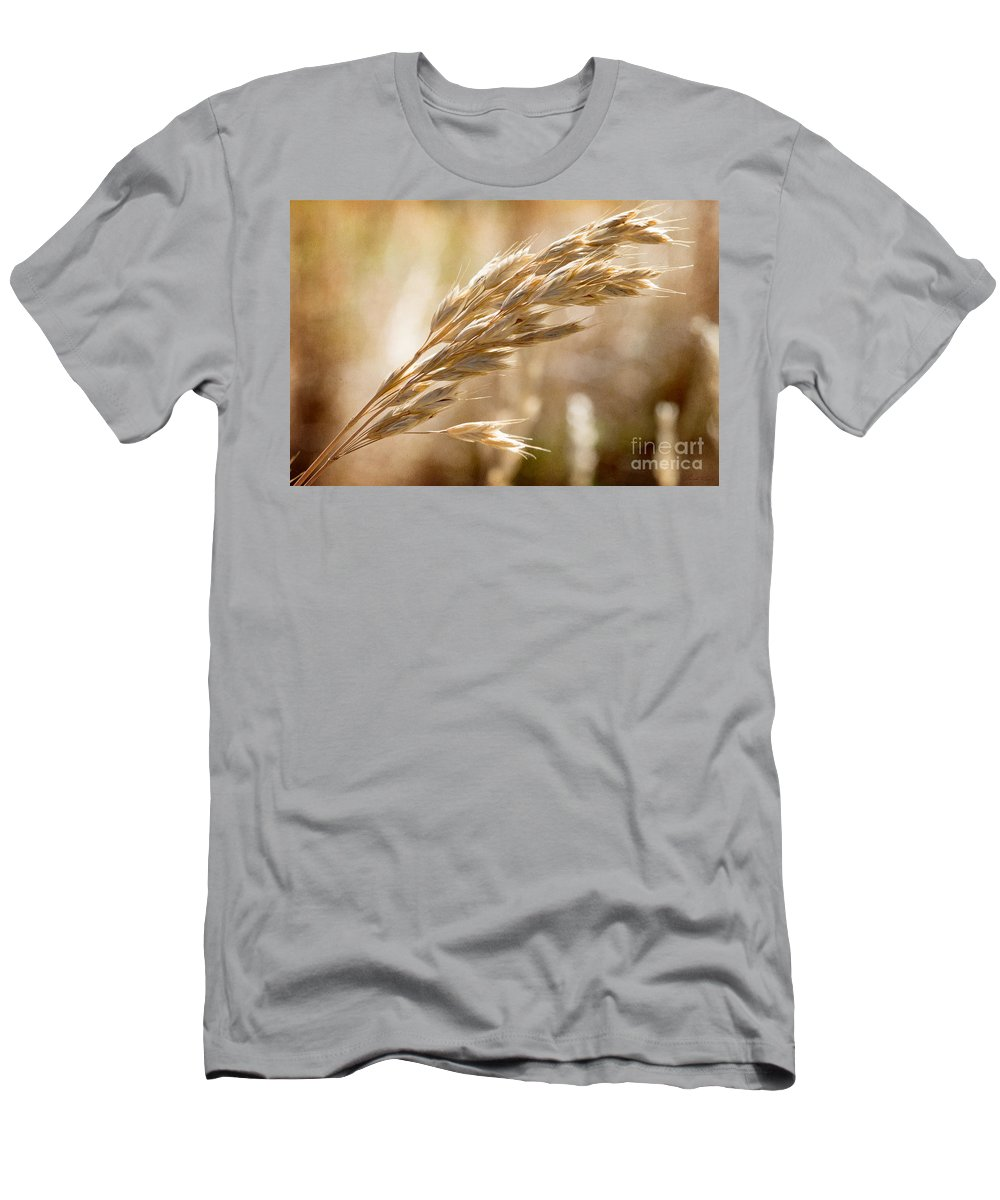 Grass Men's T-Shirt (Athletic Fit) featuring the photograph The Hot Gold Hush Of Noon by Linda Lees