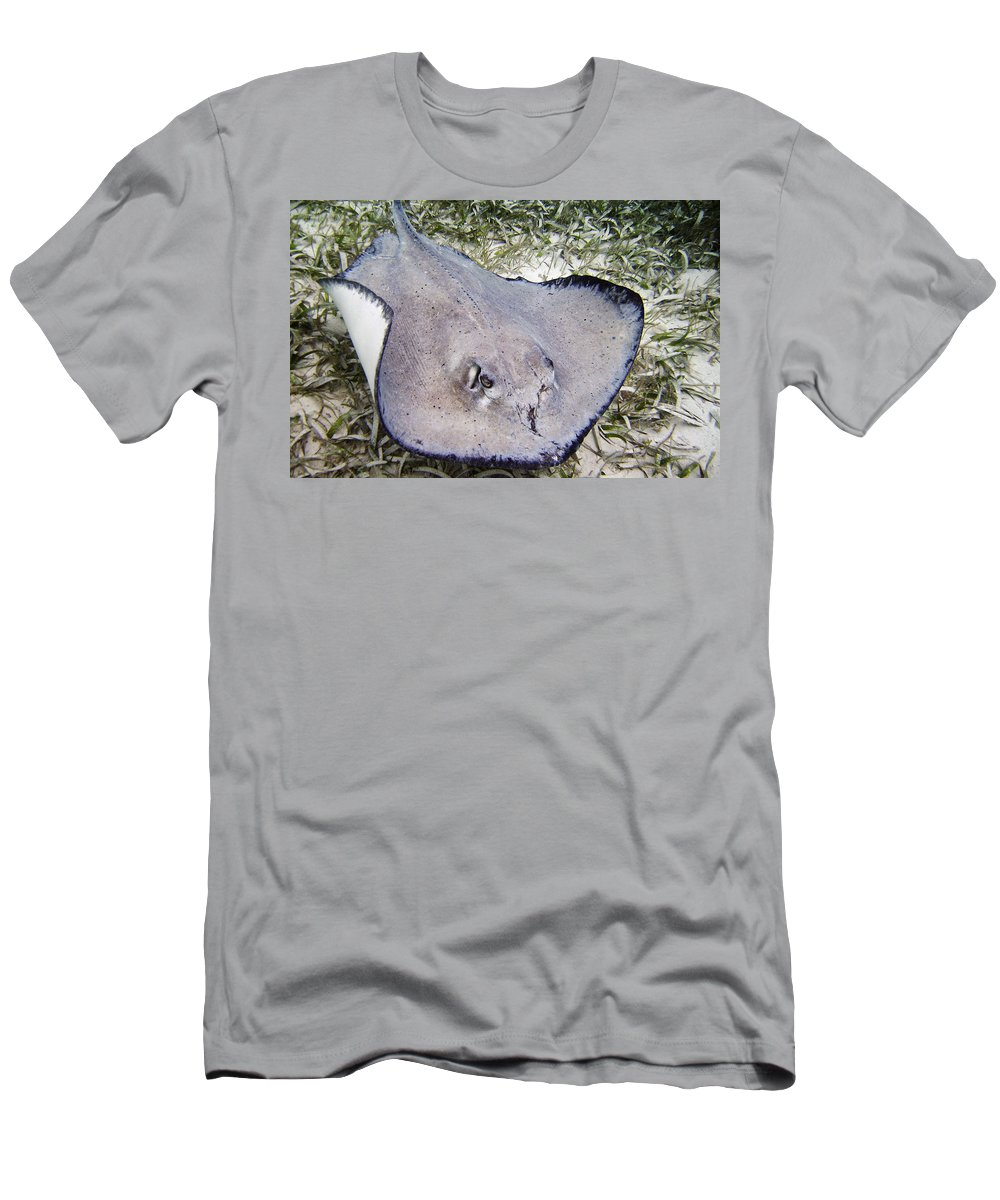 Ocean Men's T-Shirt (Athletic Fit) featuring the photograph The Survivor by Terry Melius
