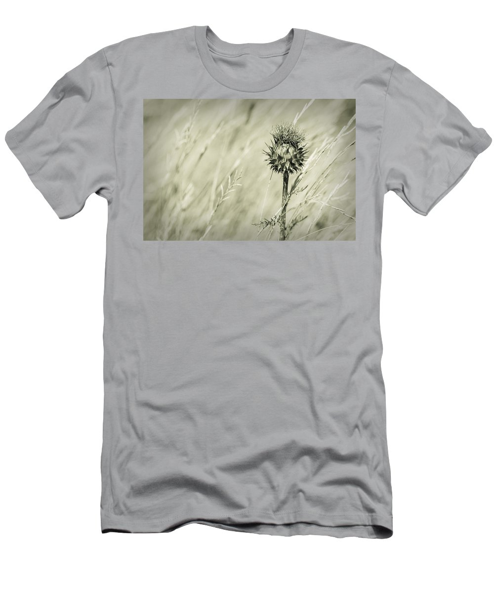 Thistle Men's T-Shirt (Athletic Fit) featuring the photograph Thistle - Dreamers Garden Series by Marco Oliveira