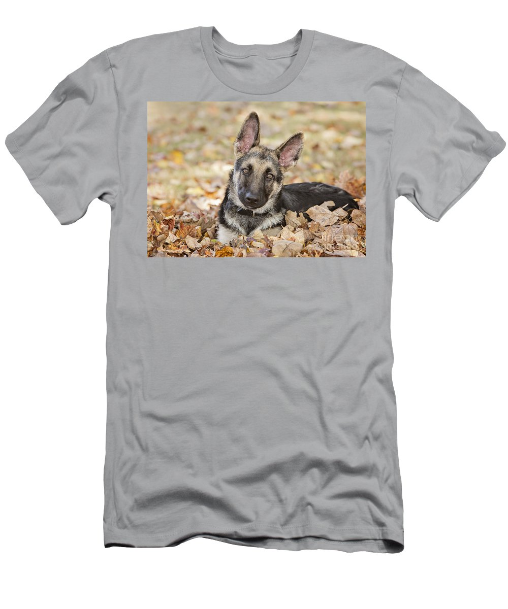 Pet Men's T-Shirt (Athletic Fit) featuring the photograph Those Ears by Linda D Lester