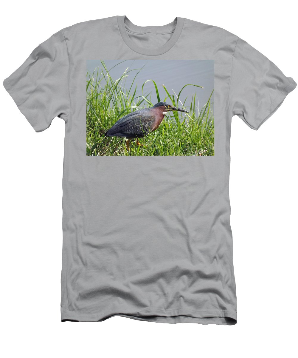 Bird Men's T-Shirt (Athletic Fit) featuring the photograph Time To Wade by Greg Boutz