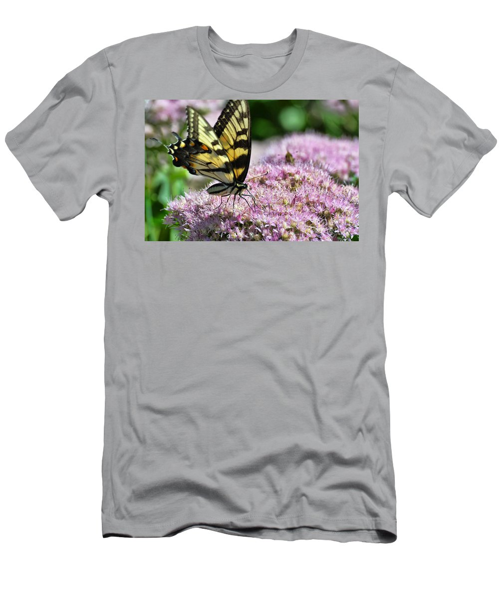 Butterfly Men's T-Shirt (Athletic Fit) featuring the photograph Tip Toe Through The Flowers by Judy Wolinsky