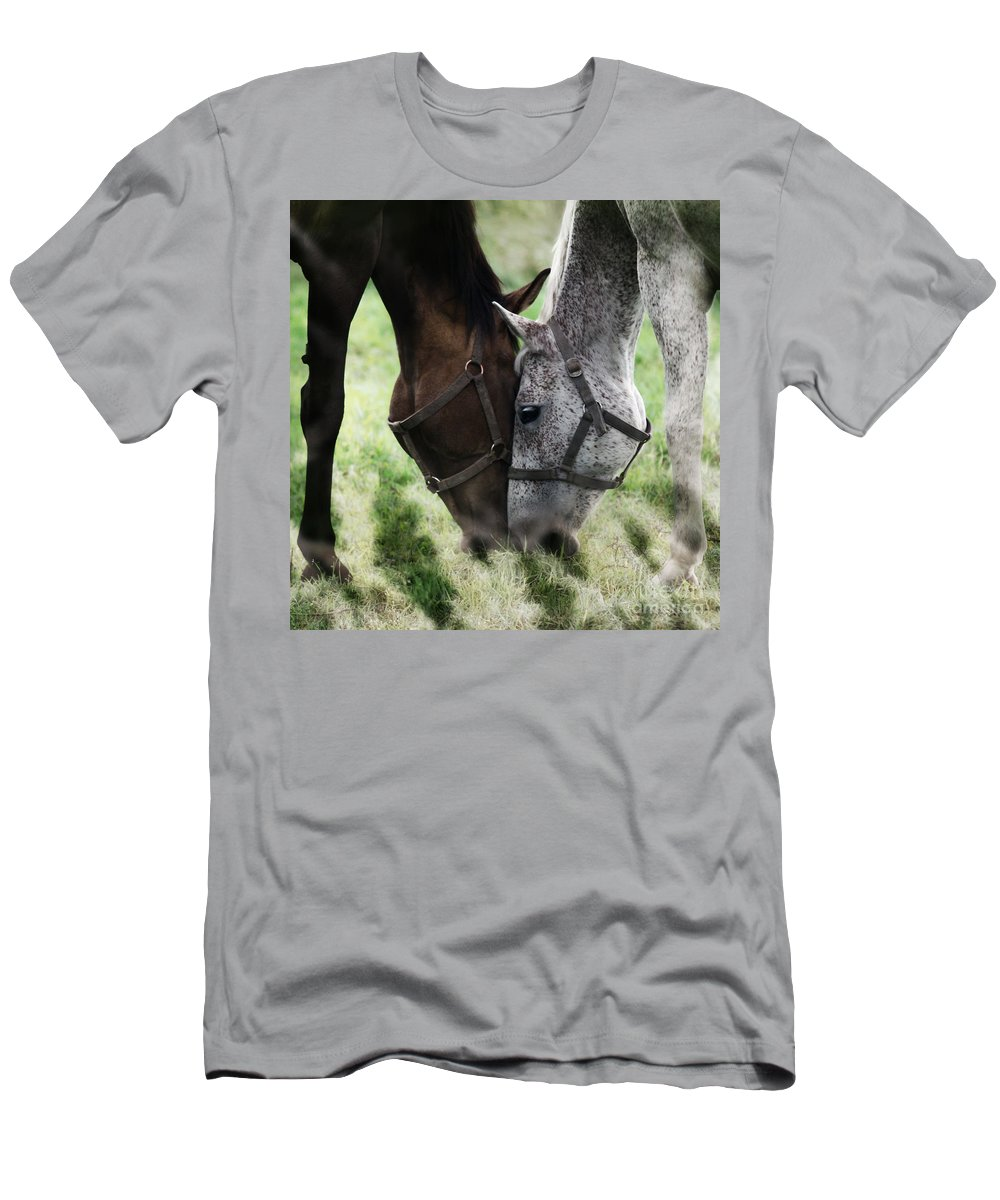 Horses Men's T-Shirt (Athletic Fit) featuring the photograph Together by Angel Ciesniarska
